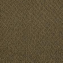 Shaw Floors Roll Special Xv480 Woodland Moss 00312_XV480