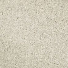 Shaw Floors Roll Special Xv540 Snow Cone 00100_XV540