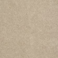 Shaw Floors Roll Special Xv540 Project Beige 00102_XV540