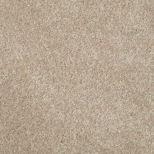 Shaw Floors Roll Special Xv540 Cameo 00106_XV540