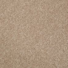 Shaw Floors Roll Special Xv540 Desert Trail 00107_XV540