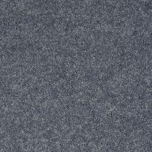 Shaw Floors Roll Special Xv540 Blue Bird 00421_XV540