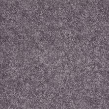 Shaw Floors Roll Special Xv540 Pewter 00521_XV540