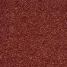 Shaw Floors Roll Special Xv540 Copper 00620_XV540