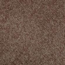 Shaw Floors Roll Special Xv540 Mocha Chip 00704_XV540