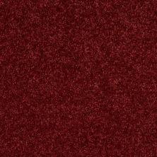 Shaw Floors Roll Special Xv540 Cherry Pie 00820_XV540