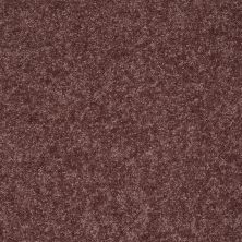 Shaw Floors Roll Special Xv540 Plum Berry 00920_XV540