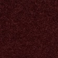 Shaw Floors Roll Special Xv540 Royal Garnet 00921_XV540