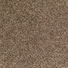 Shaw Floors Roll Special Xv542 Mocha Chip 00703_XV542