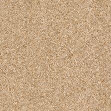 Shaw Floors Roll Special Xv543 Cornsilk 00101_XV543