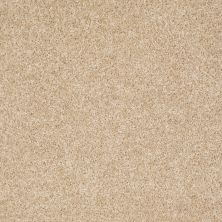 Shaw Floors Roll Special Xv543 Bisque 00102_XV543
