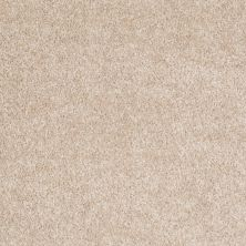 Shaw Floors Roll Special Xv543 Aura 00104_XV543