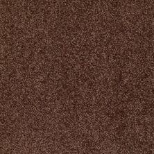 Shaw Floors Roll Special Xv543 Urban Legend 00714_XV543