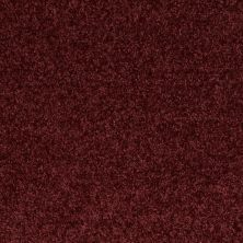 Shaw Floors Roll Special Xv543 Love Affair 00801_XV543