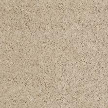 Shaw Floors Roll Special Xv630 Putty 00700_XV630