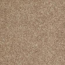 Shaw Floors Roll Special Xv669 Soft Sand 00105_XV669