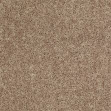Shaw Floors Roll Special Xv669 River Pebble 00107_XV669