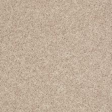 Shaw Floors Roll Special Xv669 Winter Wind 00110_XV669