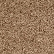 Shaw Floors Roll Special Xv669 Summer Straw 00205_XV669