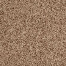Shaw Floors Roll Special Xv669 Suede 00700_XV669