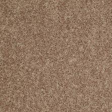 Shaw Floors Roll Special Xv669 Tumbleweed 00701_XV669