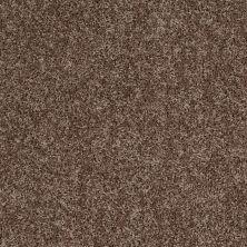 Shaw Floors Roll Special Xv669 Thatch 00703_XV669