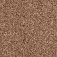 Shaw Floors Roll Special Xv669 Saddle 00734_XV669