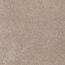 Shaw Floors Roll Special Xv694 Havana 00701_XV694