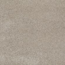Shaw Floors Roll Special Xv694 Coastal Fog 00702_XV694