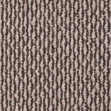 Shaw Floors Roll Special Xv700 Walnut Grove 00702_XV700