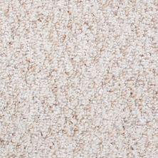 Shaw Floors Roll Special Xv710 12′ Travertine 00104_XV710