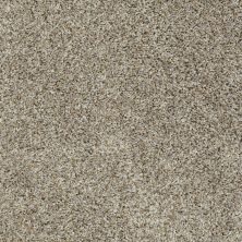 Shaw Floors Roll Special Xv734 Stingray 00530_XV734