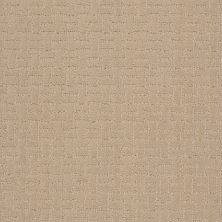 Shaw Floors Roll Special Xv805 Buff Beige 00102_XV805