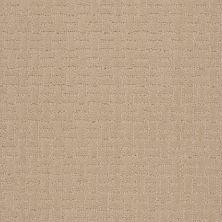 Shaw Floors Roll Special Xv805 Buff Beige 00102_XV805