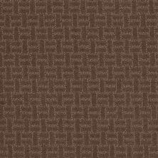 Shaw Floors Roll Special Xv805 Slate 00704_XV805