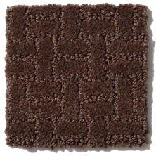 Shaw Floors Roll Special Xv805 Truffle 00706_XV805