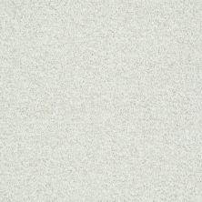 Shaw Floors Roll Special Xv811 Twinkle 00100_XV811