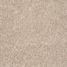 Shaw Floors Roll Special Xv811 Bamboo 00103_XV811