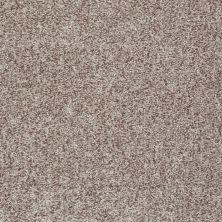 Shaw Floors Roll Special Xv811 Flax 00104_XV811