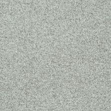 Shaw Floors Roll Special Xv811 Portobello 00501_XV811