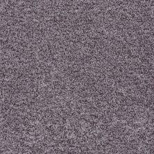 Shaw Floors Roll Special Xv811 Ironstone 00503_XV811