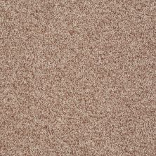 Shaw Floors Roll Special Xv811 Camel 00700_XV811