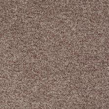 Shaw Floors Roll Special Xv811 Pecan 00701_XV811