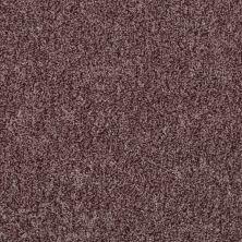 Shaw Floors Roll Special Xv811 Rye 00702_XV811