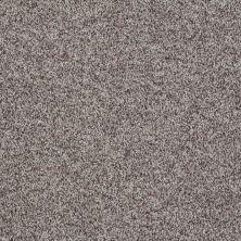 Shaw Floors Roll Special Xv811 Fleece 00704_XV811