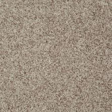 Shaw Floors Roll Special Xv812 Oatmeal 00114_XV812