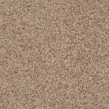 Shaw Floors Roll Special Xv812 Wheat 00710_XV812