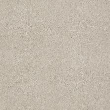 Shaw Floors Roll Special Xv813 Linen 00104_XV813