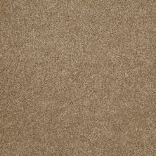 Shaw Floors Roll Special Xv813 Bridgewater Tan 00709_XV813