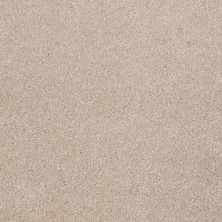 Shaw Floors Roll Special Xv815 French Canvas 00102_XV815